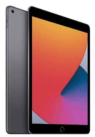 Latest Apple iPad 10.2 8th Generation (Finest 10 Inch iPad in General)
